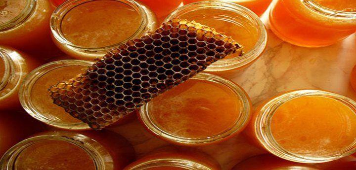 мед - продукт пчеловодства