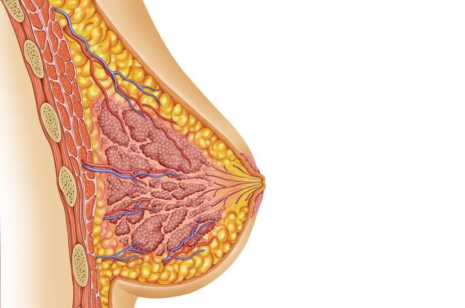 причины набухания и болей молочных желез