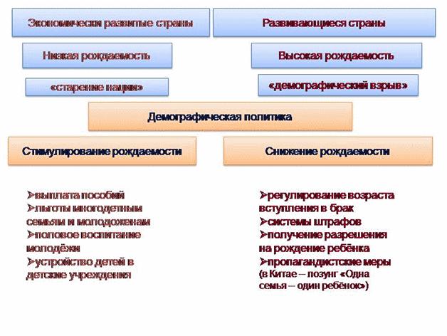схема демографической политики