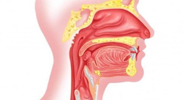 подрезание язычка в горле от храпа